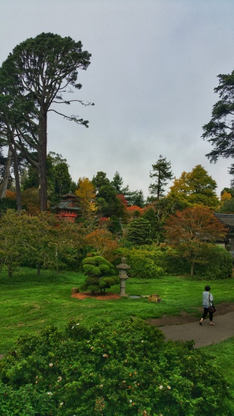 One of the gardens at The Golden Gate Park
