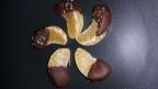 Halos Chocolate Mandarins